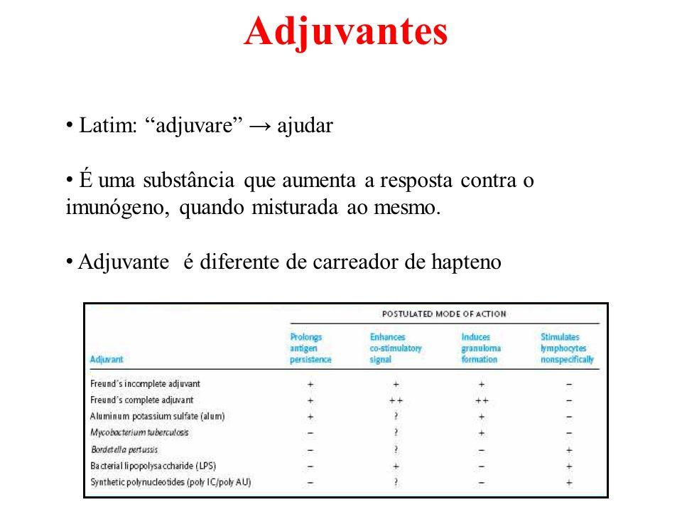 Adjuvantes Latim: adjuvare → ajudar