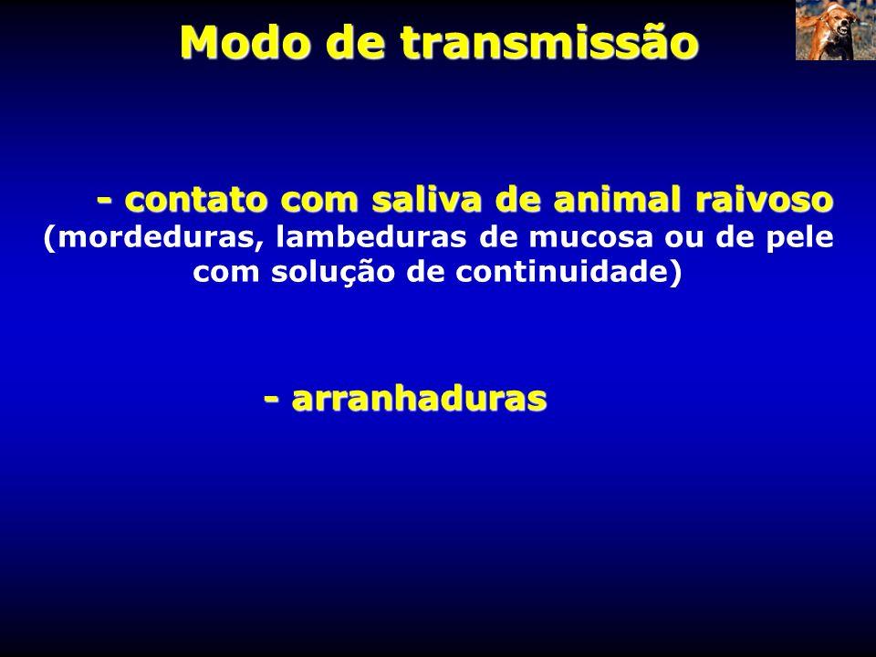 - contato com saliva de animal raivoso