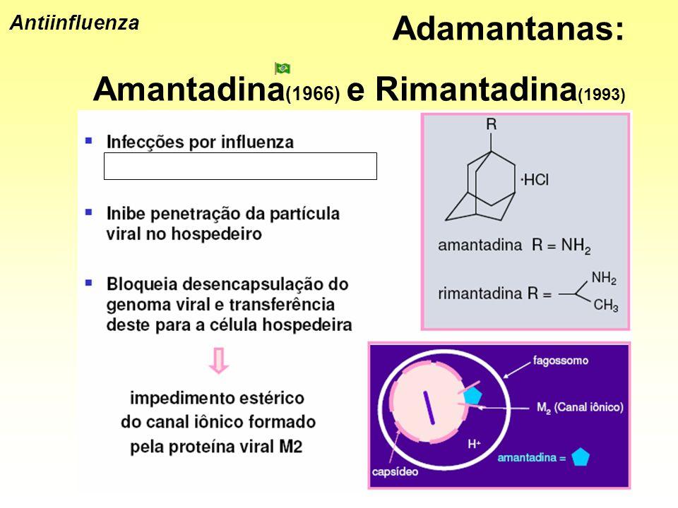 Amantadina(1966) e Rimantadina(1993)