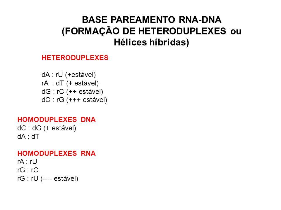 BASE PAREAMENTO RNA-DNA (FORMAÇÃO DE HETERODUPLEXES ou Hélices híbridas)