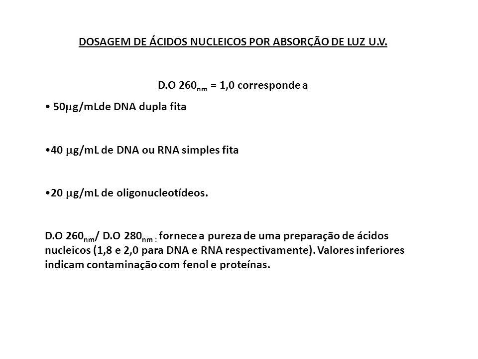 DOSAGEM DE ÁCIDOS NUCLEICOS POR ABSORÇÃO DE LUZ U.V.