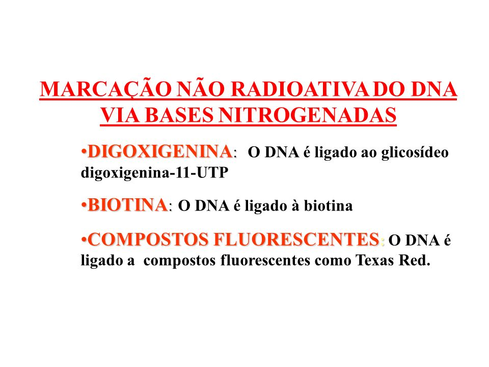 MARCAÇÃO NÃO RADIOATIVA DO DNA VIA BASES NITROGENADAS