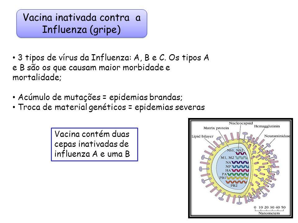 Vacina inativada contra a Influenza (gripe)