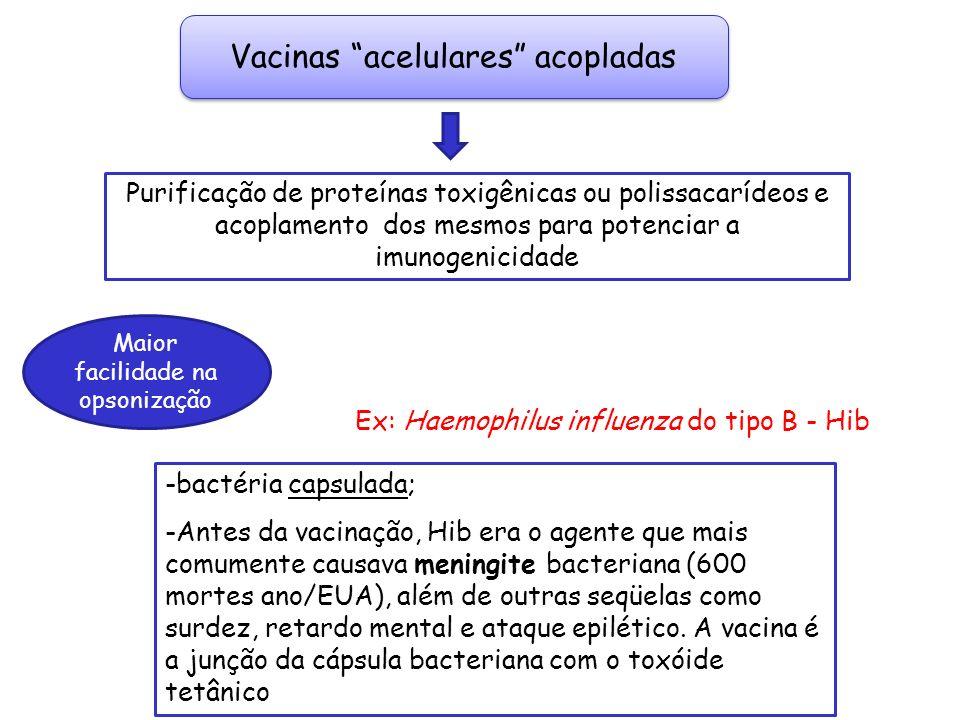 Vacinas acelulares acopladas
