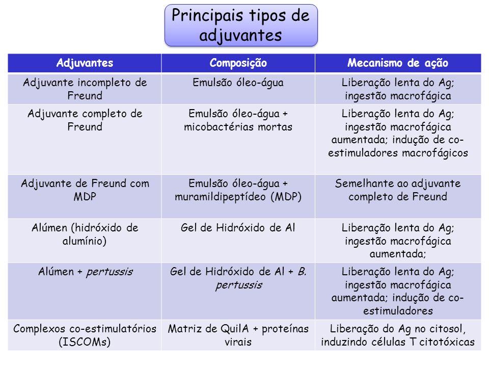 Principais tipos de adjuvantes