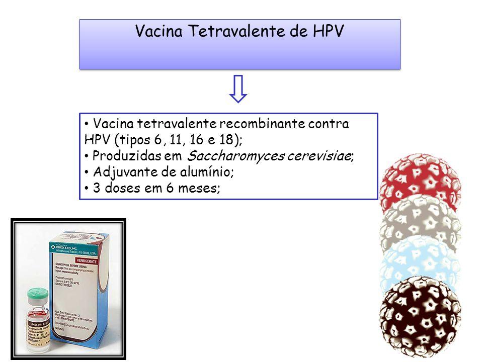 Vacina Tetravalente de HPV