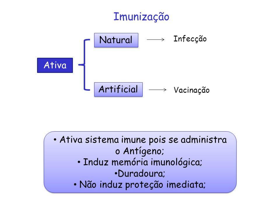 Imunização Natural Ativa Artificial