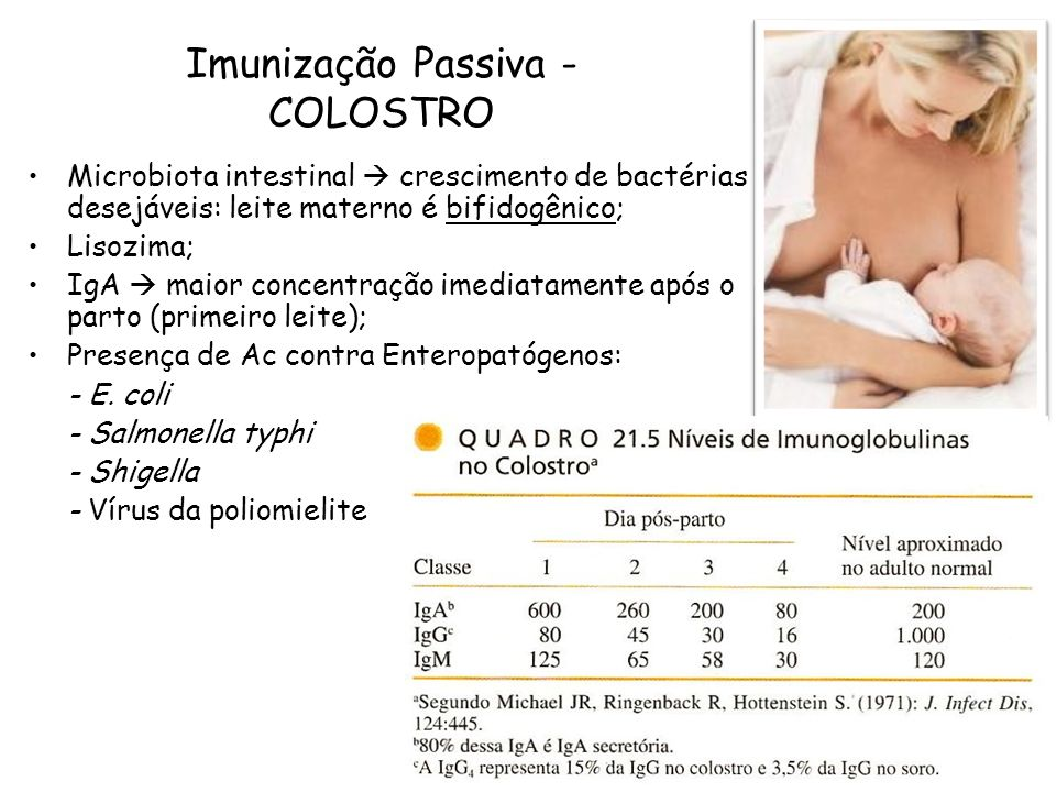 Imunização Passiva - COLOSTRO