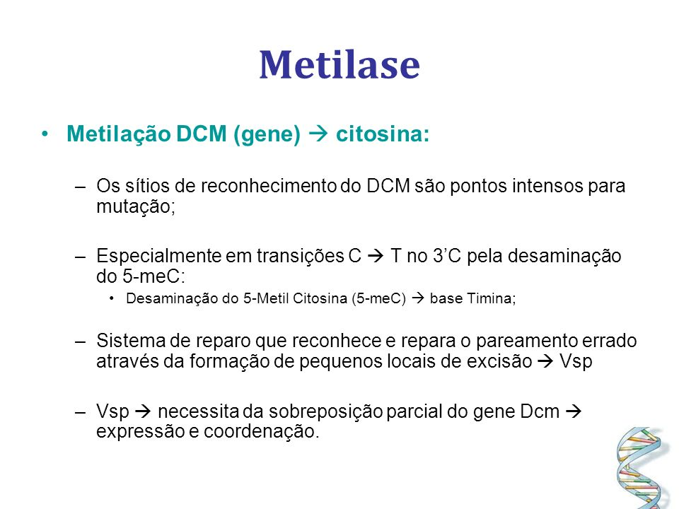 Metilase Metilação DCM (gene)  citosina: