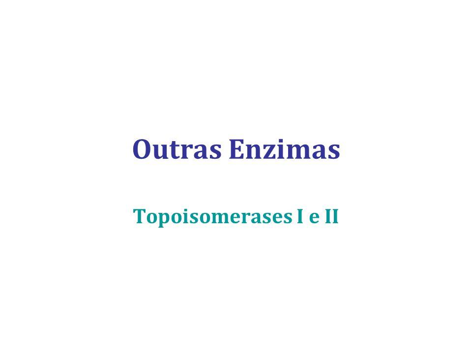 Outras Enzimas Topoisomerases I e II