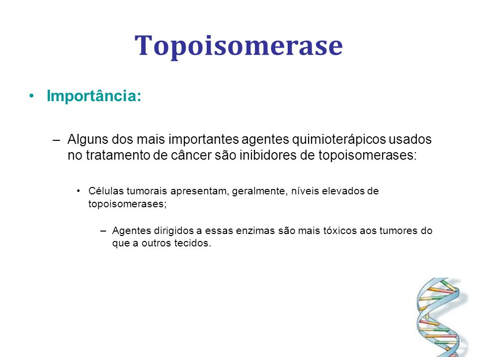 Topoisomerase Importância: