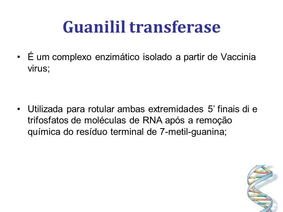 Guanilil transferase É um complexo enzimático isolado a partir de Vaccinia virus;