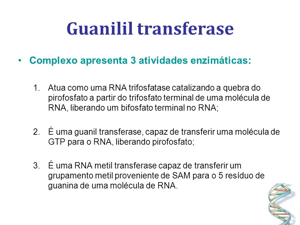Guanilil transferase Complexo apresenta 3 atividades enzimáticas:
