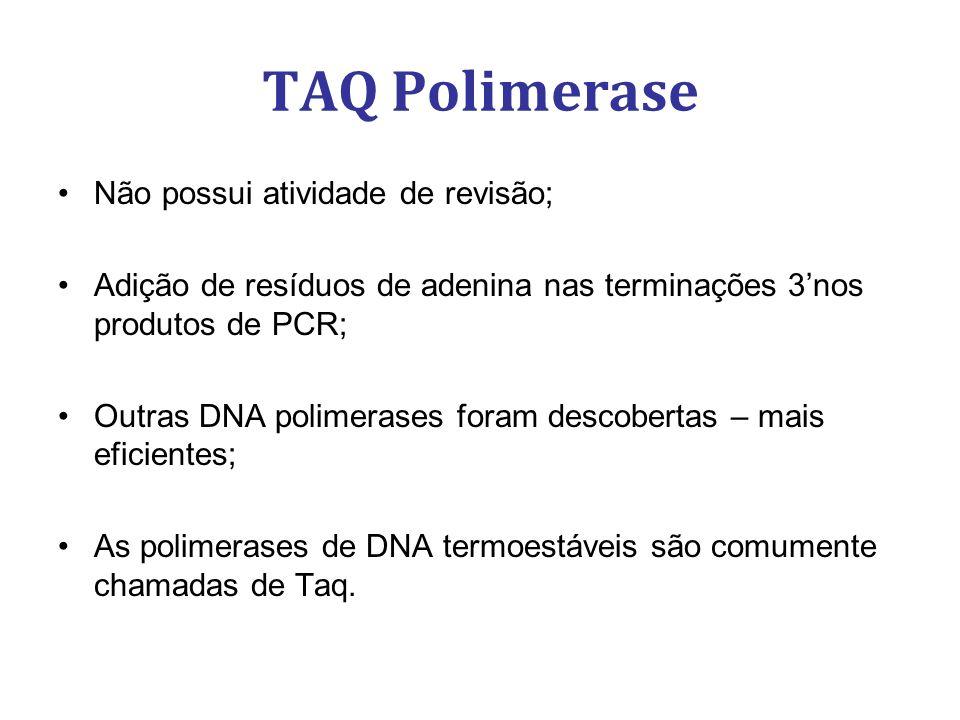TAQ Polimerase Não possui atividade de revisão;