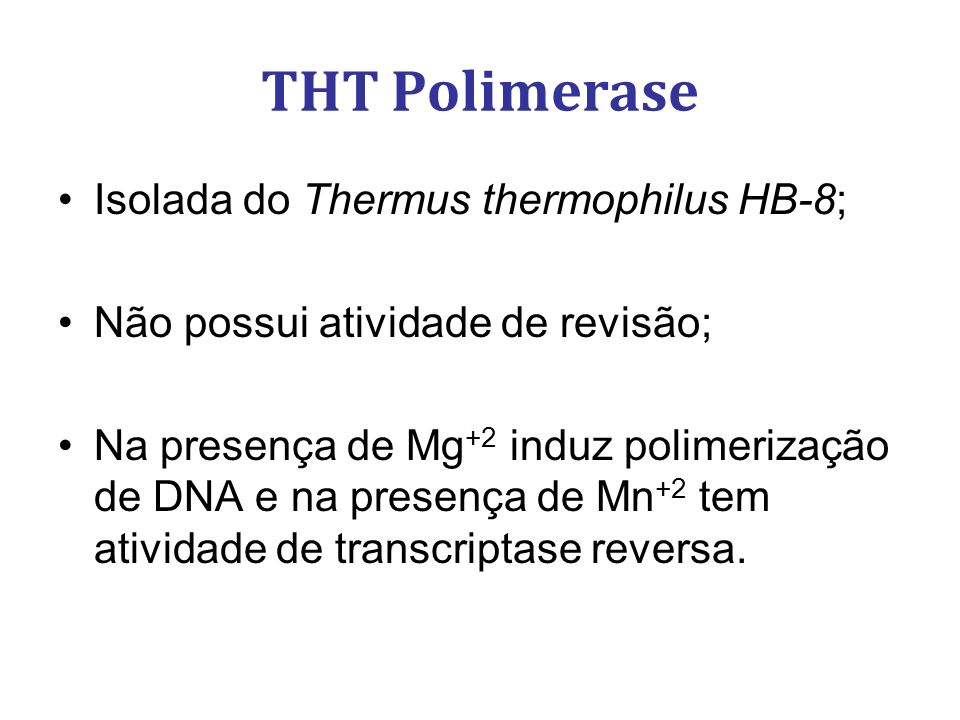 THT Polimerase Isolada do Thermus thermophilus HB-8;