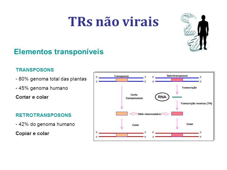 TRs não virais Elementos transponíveis TRANSPOSONS