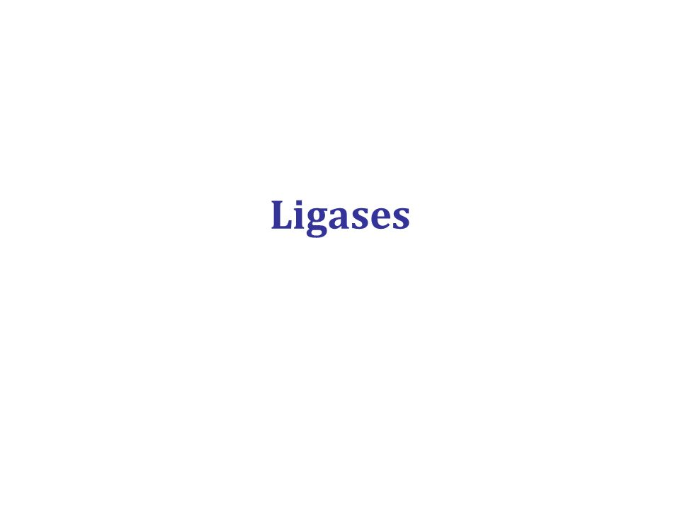 Ligases