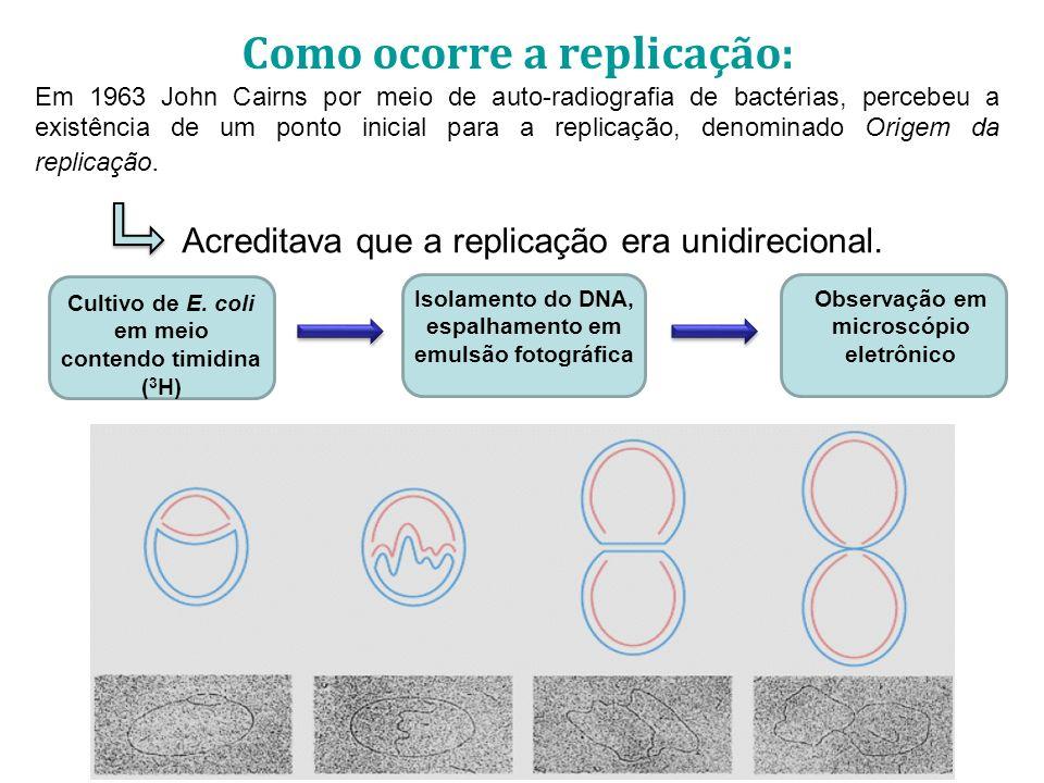 Como ocorre a replicação: