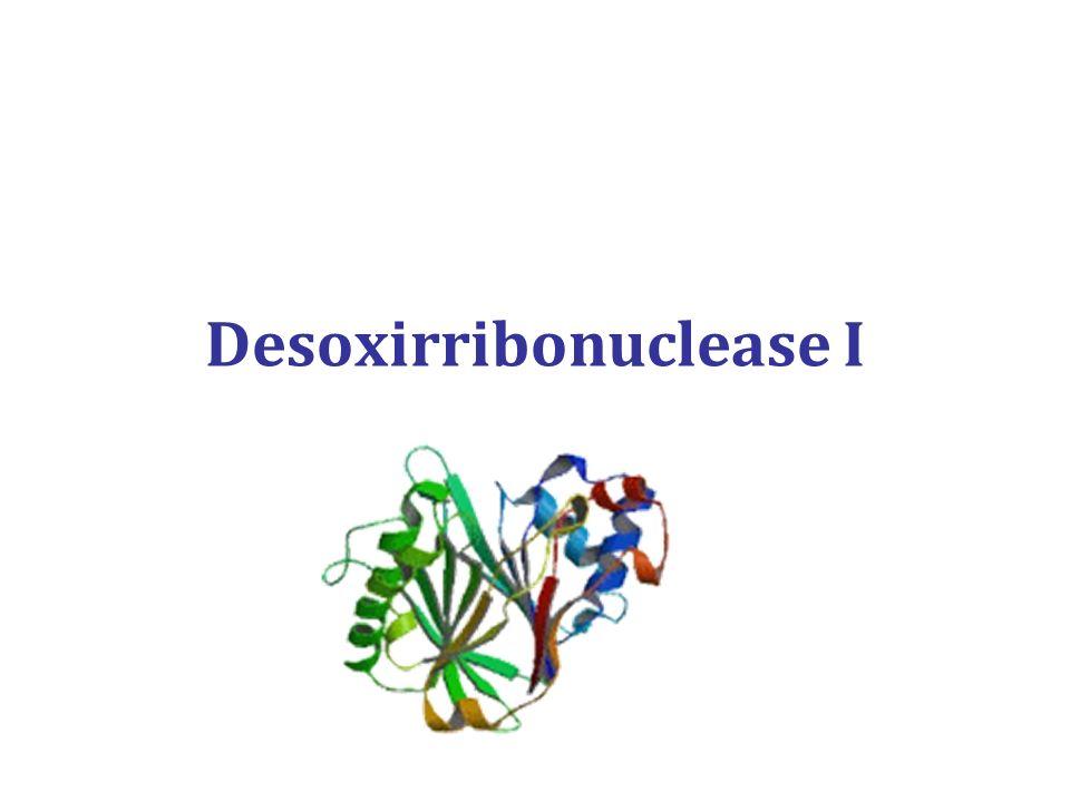 Desoxirribonuclease I