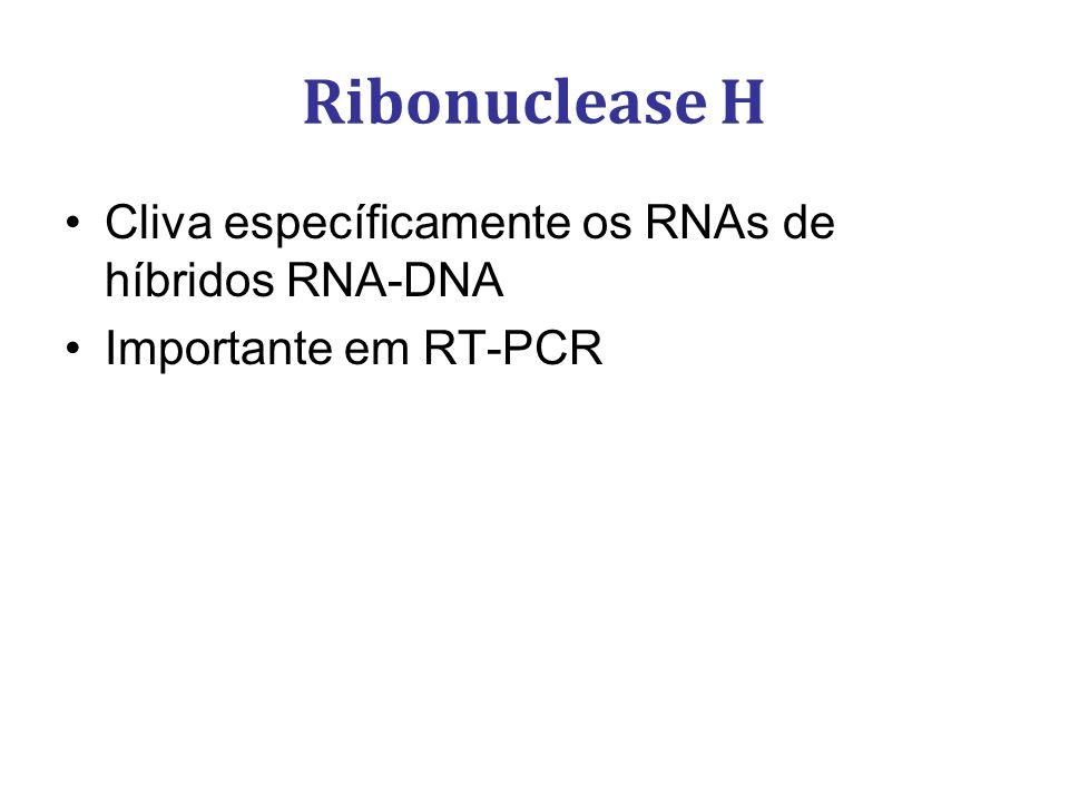 Ribonuclease H Cliva específicamente os RNAs de híbridos RNA-DNA