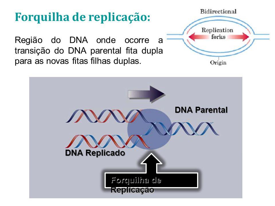 Forquilha de replicação: