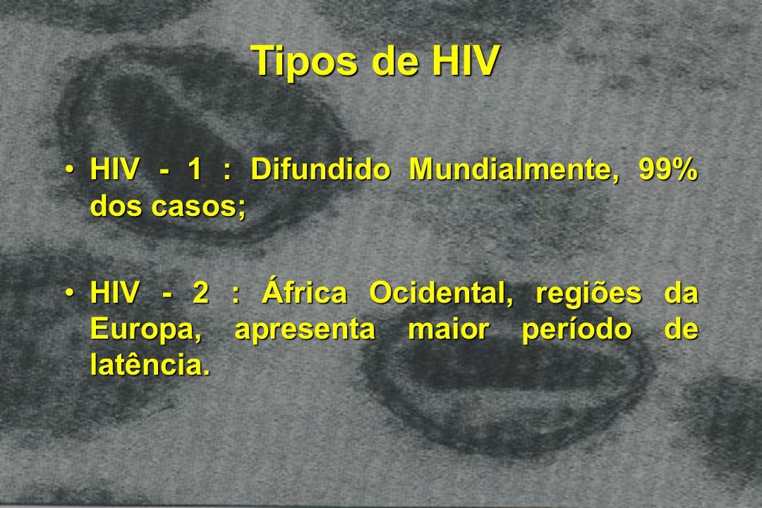 Tipos de HIV HIV - 1 : Difundido Mundialmente, 99% dos casos;