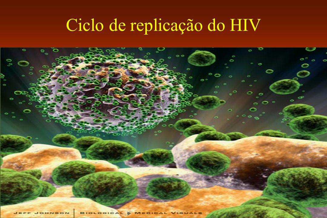 Ciclo de replicação do HIV