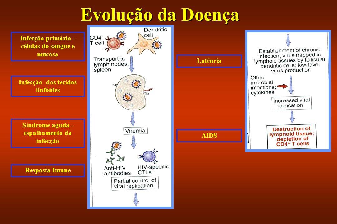 Evolução da Doença Infecção primária - células do sangue e mucosa