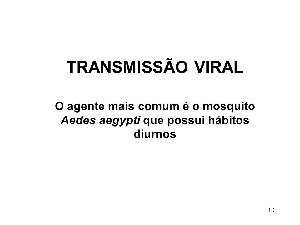 TRANSMISSÃO VIRAL O agente mais comum é o mosquito Aedes aegypti que possui hábitos diurnos