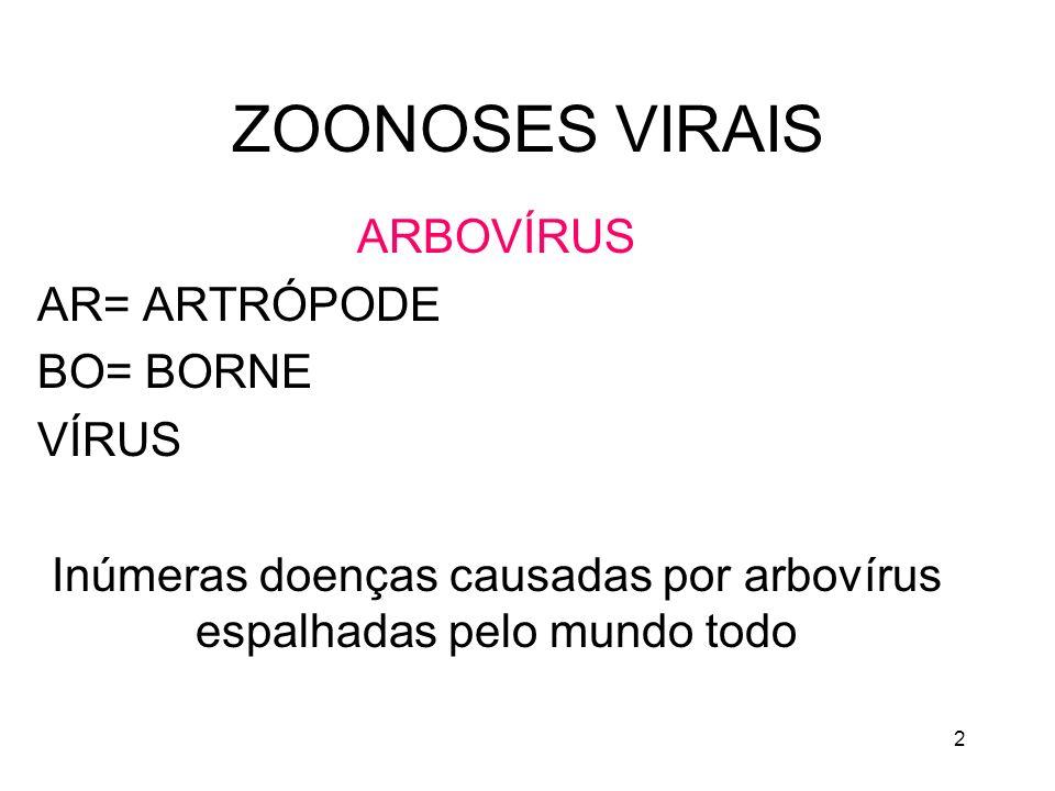 Inúmeras doenças causadas por arbovírus espalhadas pelo mundo todo