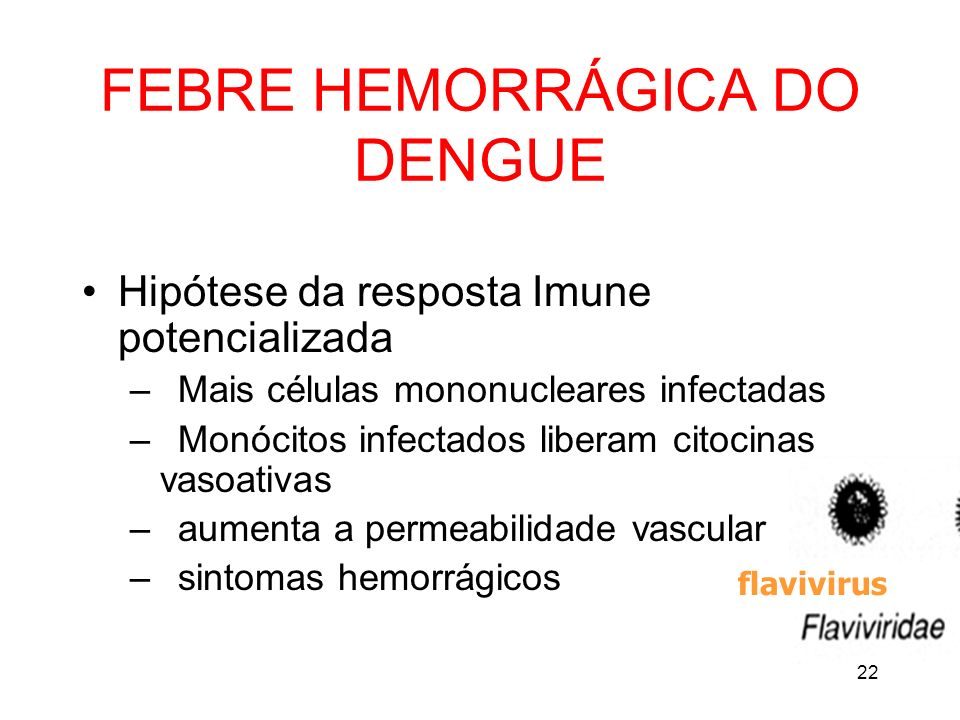 FEBRE HEMORRÁGICA DO DENGUE
