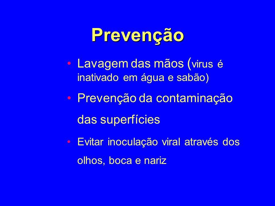 Prevenção Lavagem das mãos (virus é inativado em água e sabão)