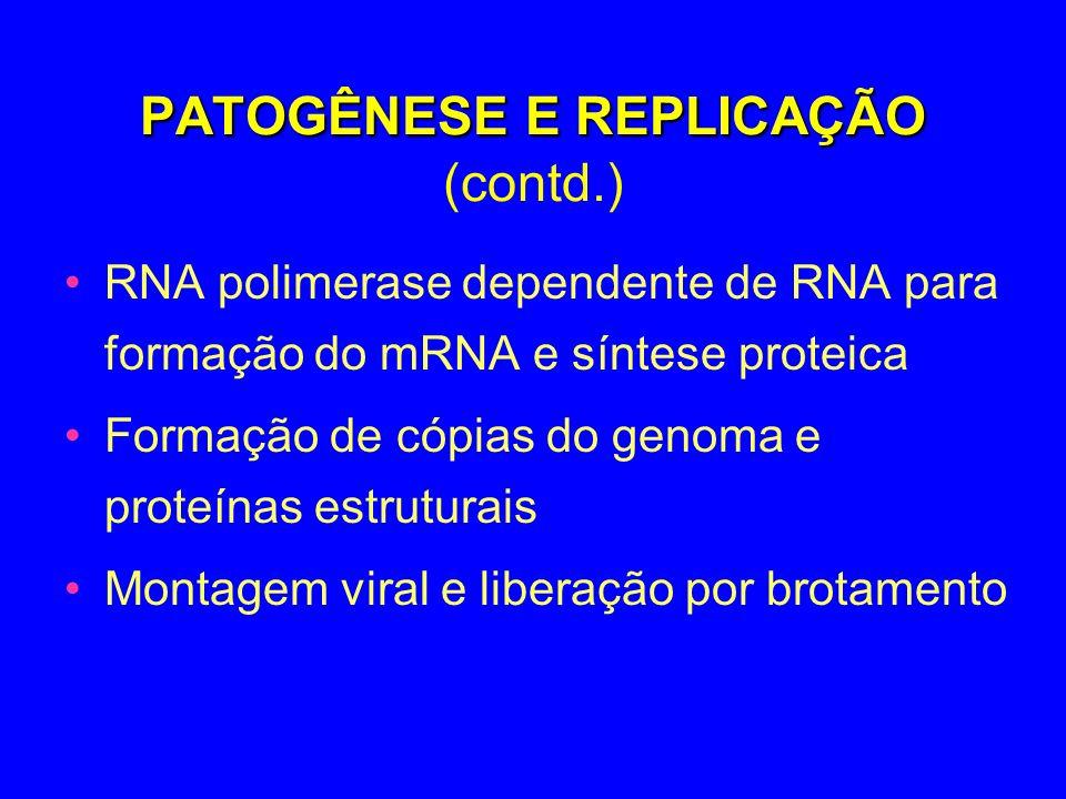 PATOGÊNESE E REPLICAÇÃO (contd.)