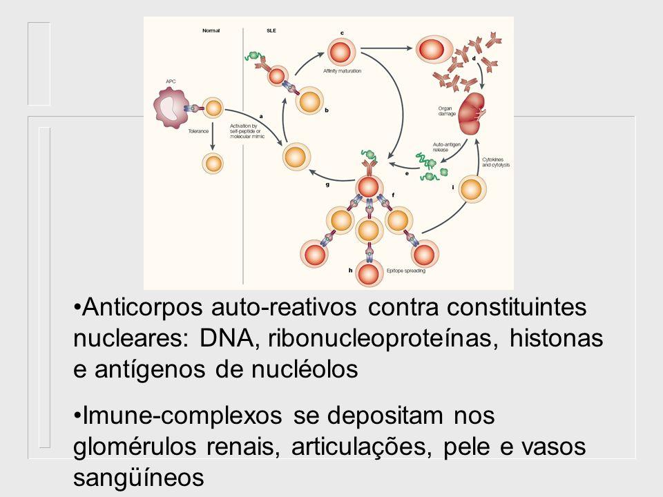 Anticorpos auto-reativos contra constituintes nucleares: DNA, ribonucleoproteínas, histonas e antígenos de nucléolos