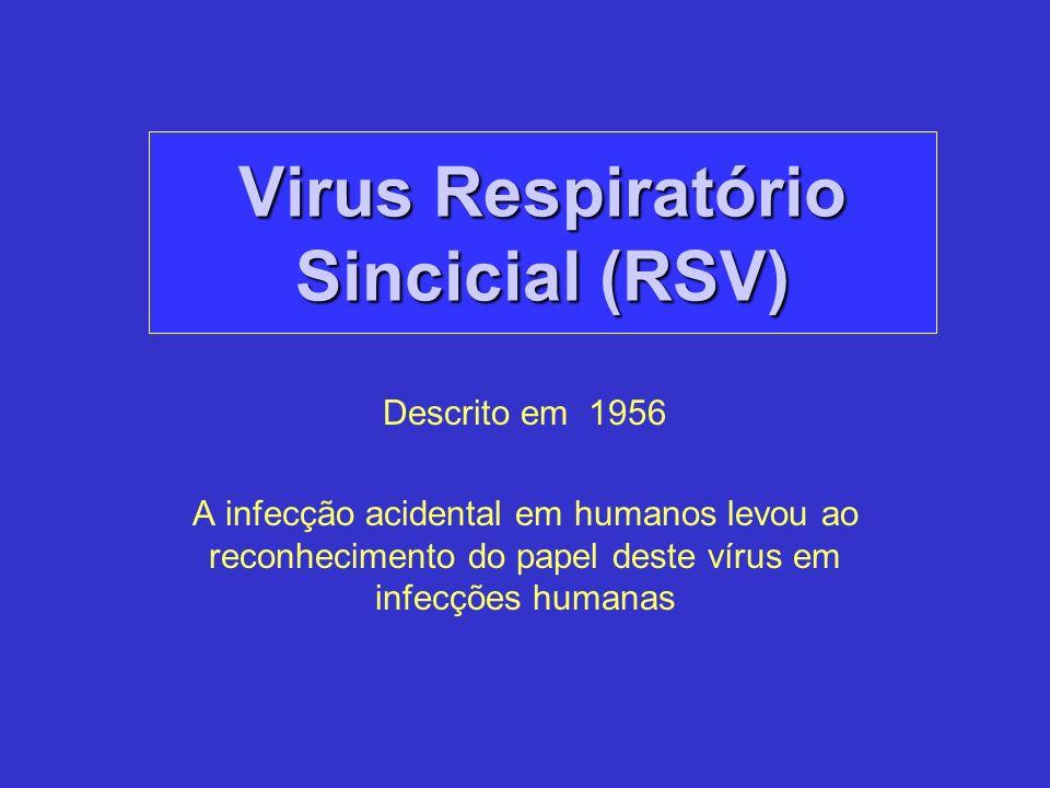 Virus Respiratório Sincicial (RSV)