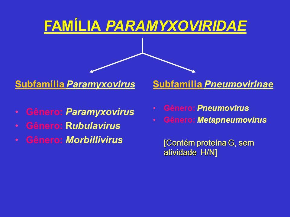 FAMÍLIA PARAMYXOVIRIDAE