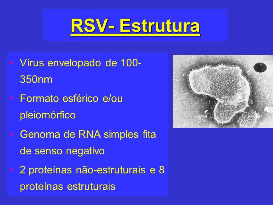 RSV- Estrutura Vírus envelopado de 100-350nm