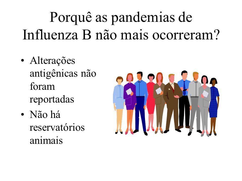 Porquê as pandemias de Influenza B não mais ocorreram