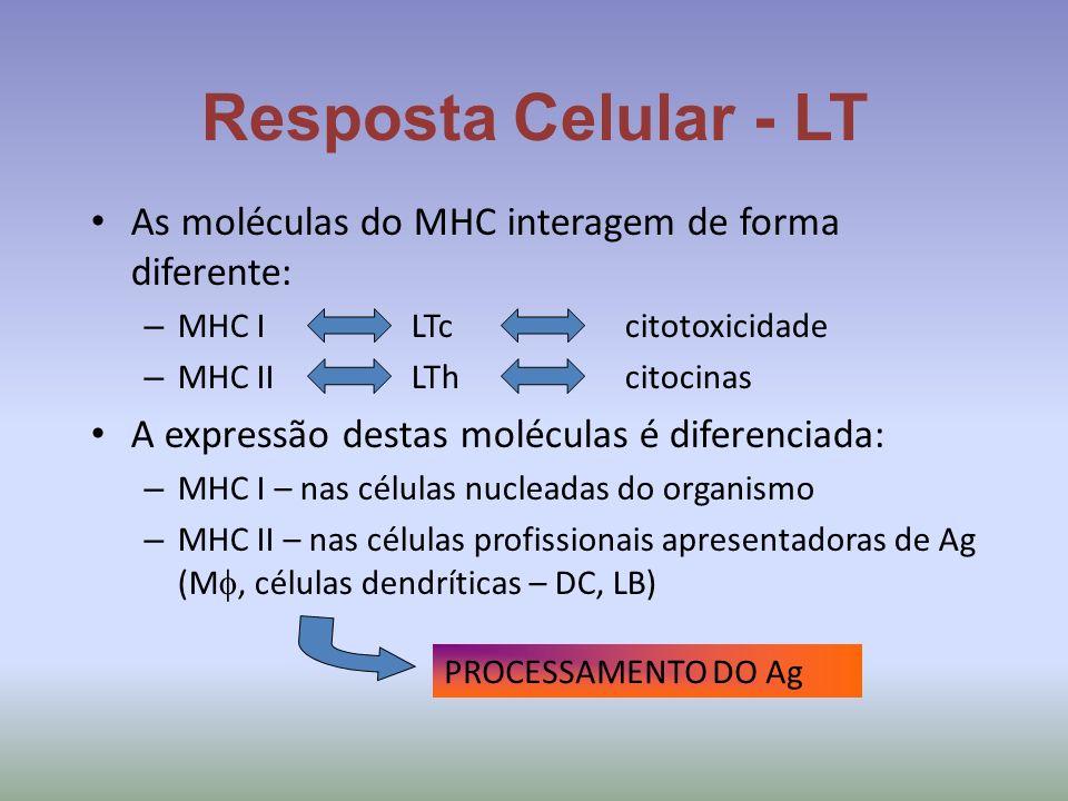 Resposta Celular - LT As moléculas do MHC interagem de forma diferente: MHC I LTc citotoxicidade.