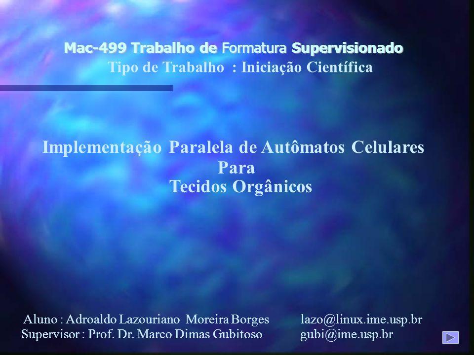 Mac-499 Trabalho de Formatura Supervisionado