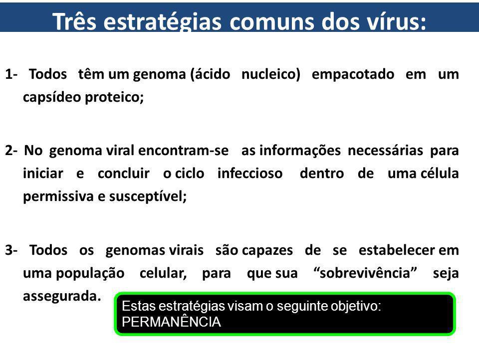 Três estratégias comuns dos vírus: