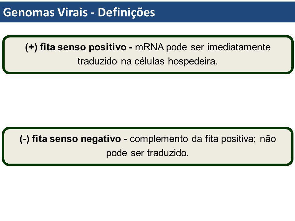Genomas Virais - Definições