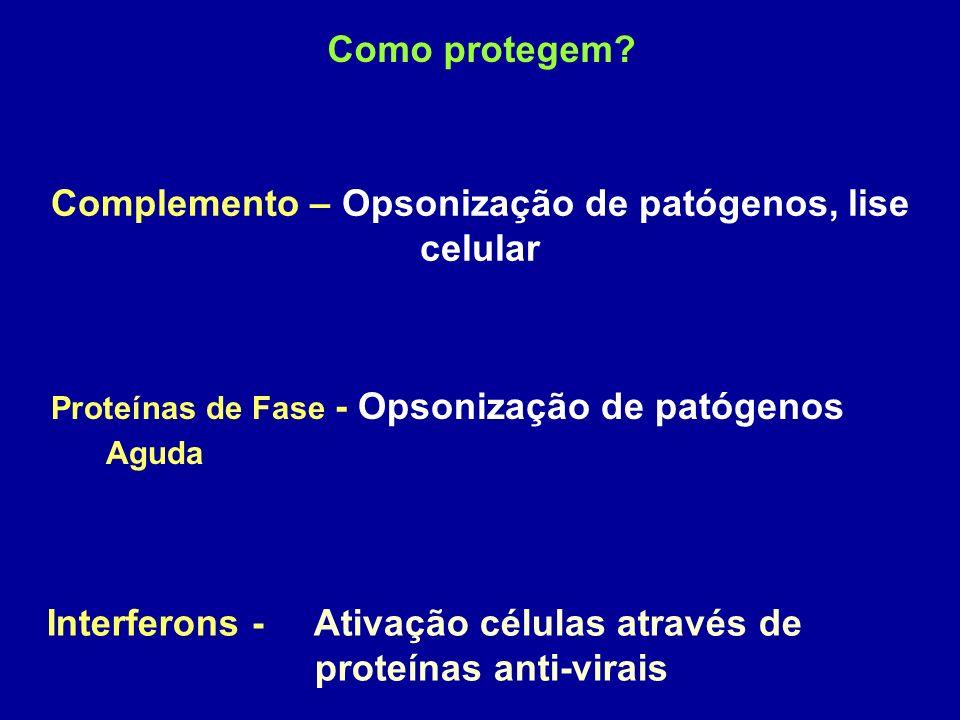 Complemento – Opsonização de patógenos, lise celular