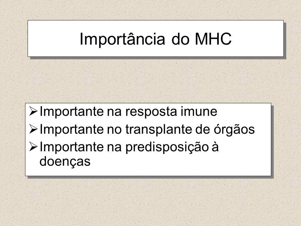 Importância do MHC Importante na resposta imune