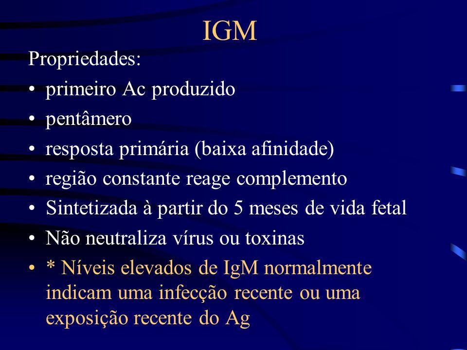IGM Propriedades: primeiro Ac produzido pentâmero