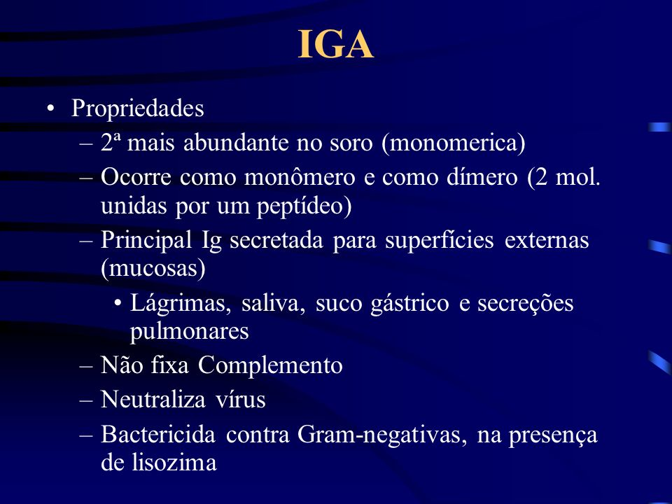 IGA Propriedades 2ª mais abundante no soro (monomerica)