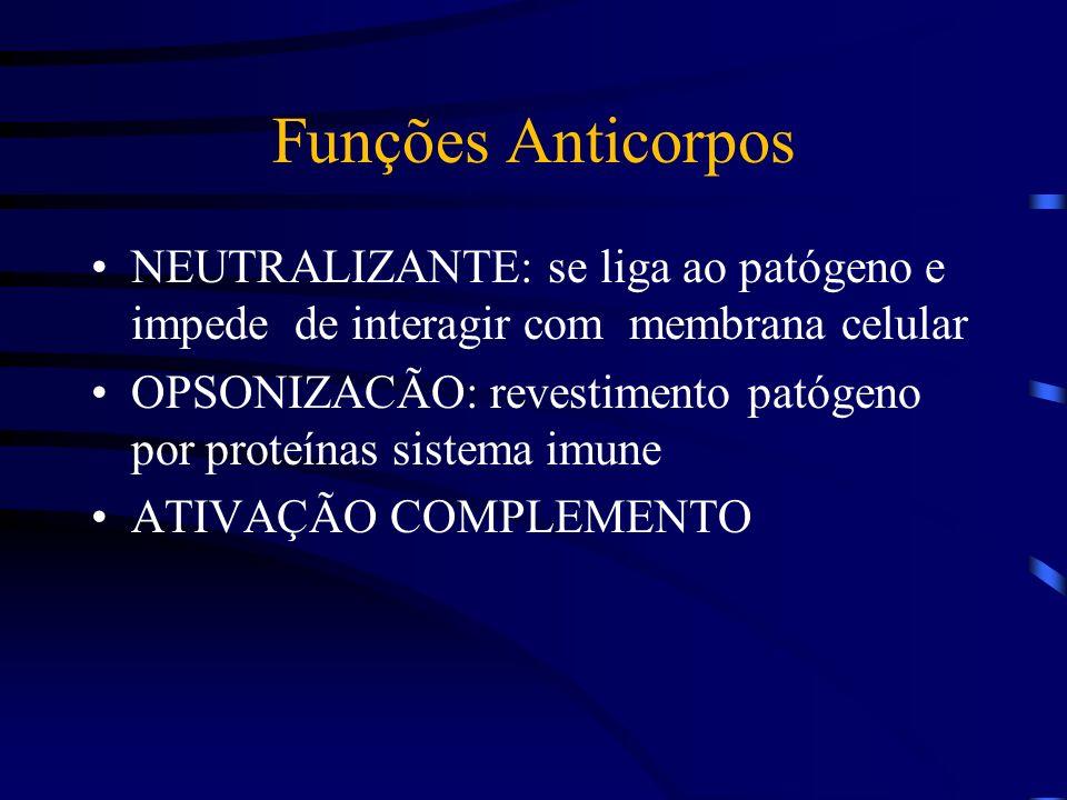 Funções Anticorpos NEUTRALIZANTE: se liga ao patógeno e impede de interagir com membrana celular.
