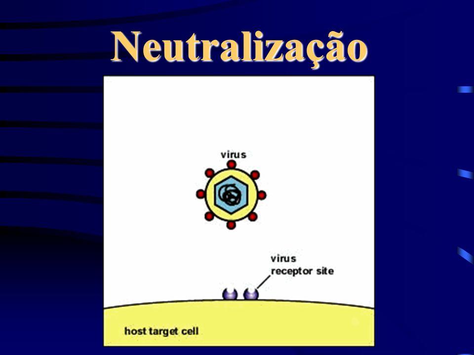 Neutralização