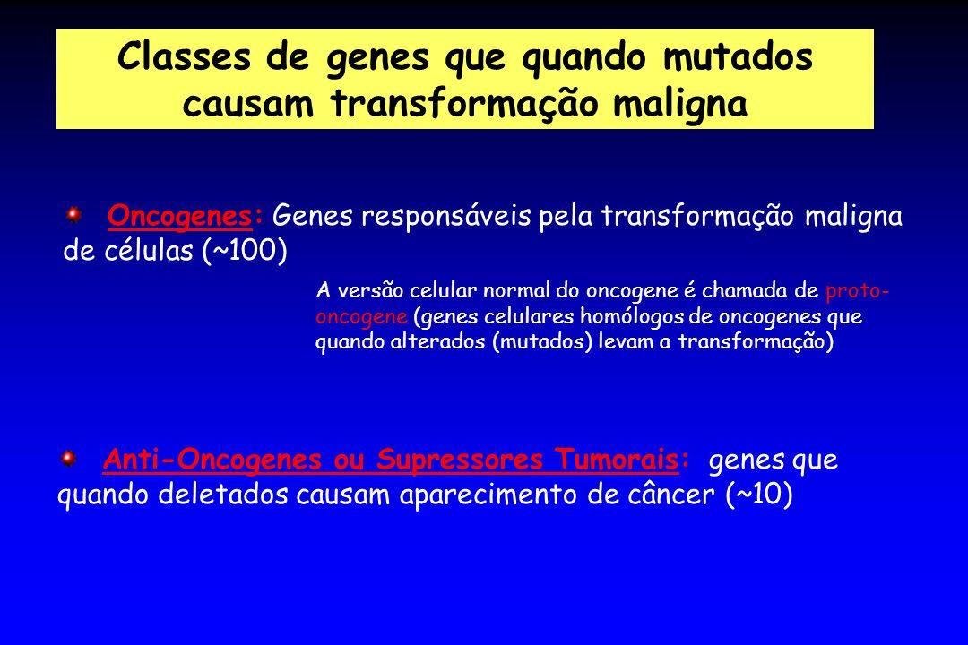 Classes de genes que quando mutados causam transformação maligna