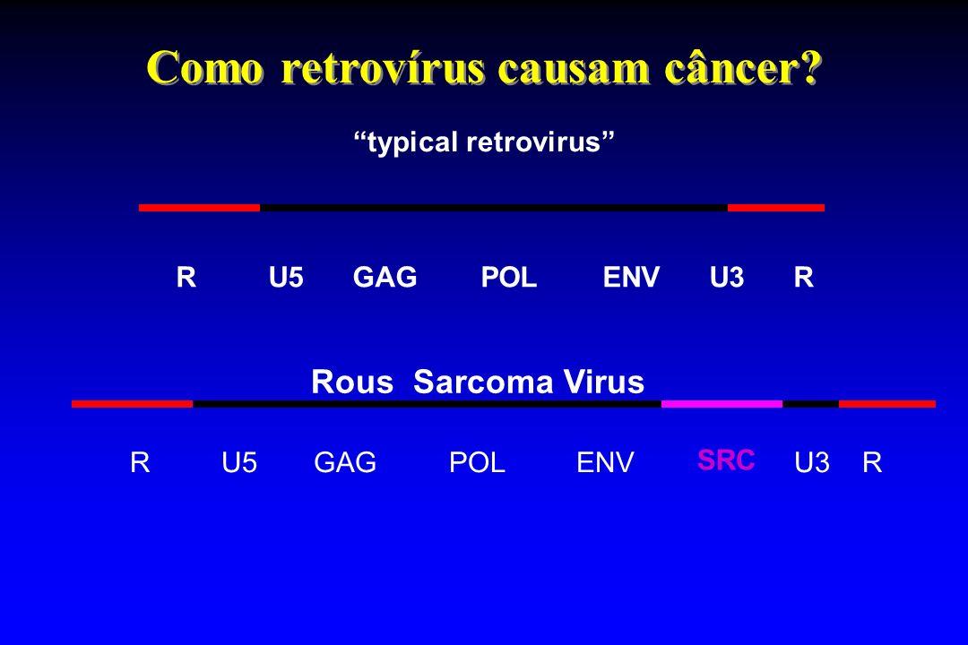 Como retrovírus causam câncer